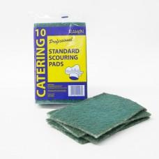 Scrubbing Pads Green (10)