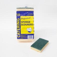 Sponge Scourer Large
