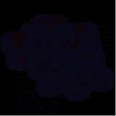 Disenfectant Tablet